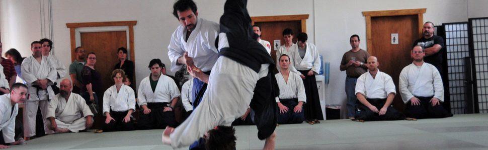 Aikido Sensei Don Ellingsworth