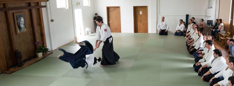 Aikido Sensei Guy Hagen